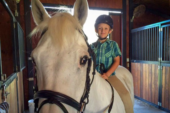 7-year-old boy buys pony with lemonade stand money