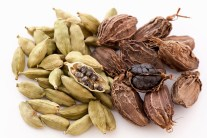 Health Benefits of Cardamom You Should Know About