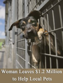 Woman Leaves $1.2 Million to Help Local Pets