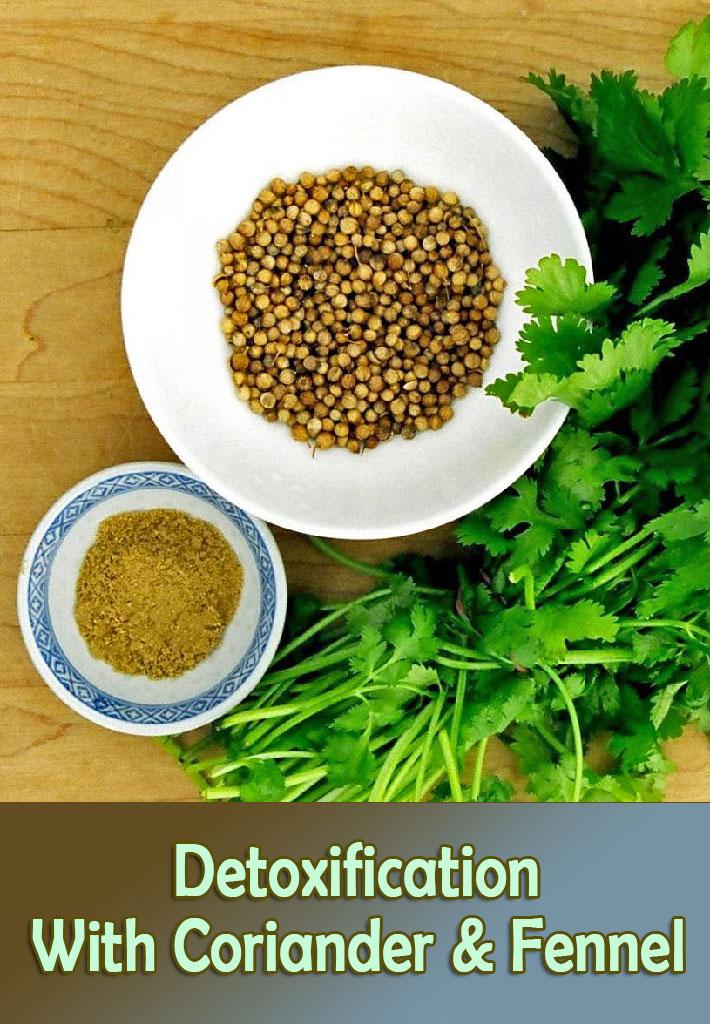 Detoxification With Coriander & Fennel Water - Quiet Corner