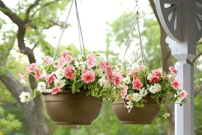 Watering Hanging Baskets 4