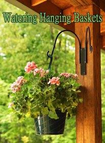 Watering Hanging Baskets