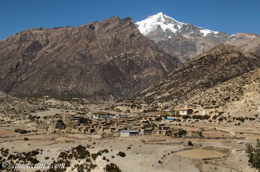 Manang. A pretty little town where we would enjoy our last shower. Not hot water after 3500m.