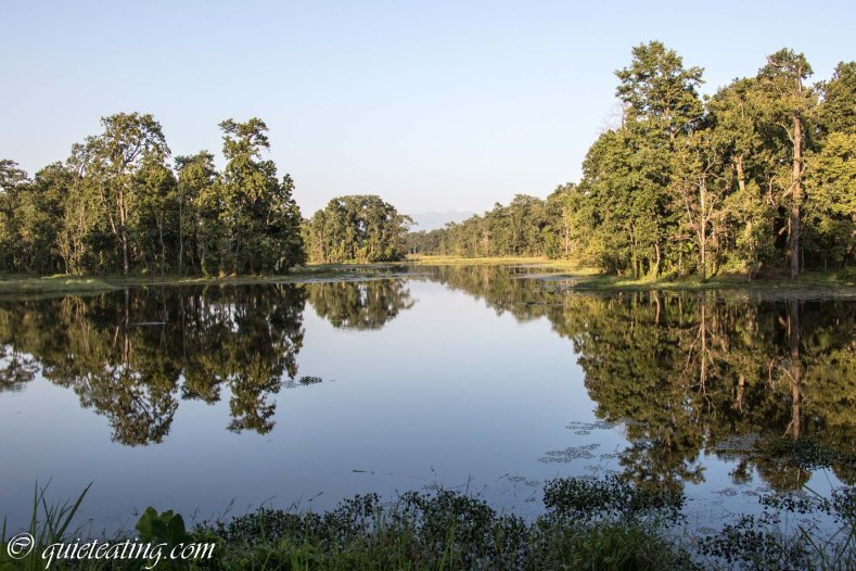 The large lake in the middle of Chitwan national park