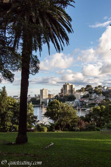 View from a park near the Sydney harbour