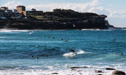 Surfers catching some waves