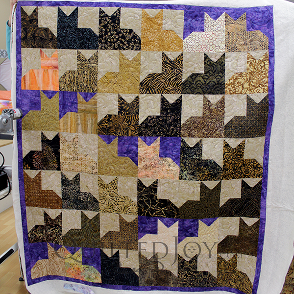 Nancy quilted her Pins and Paws quilt at Quilted Joy.