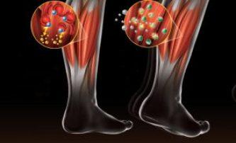 ácido láctico en los musculos