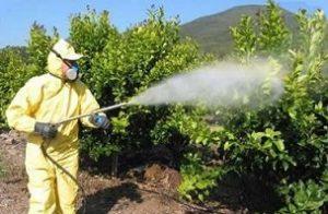 insecticidas fumigación talio tóxico