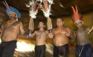 ritual en la tribu amazónica Sateré-Mawé