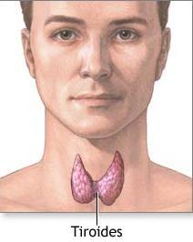 tiroides bocio yodo