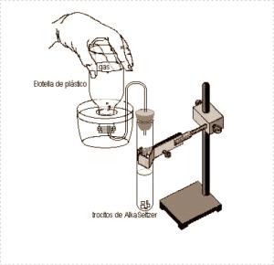 montaje del experimento