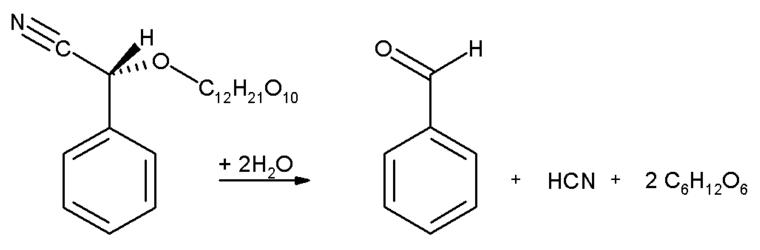 Resultado de imagen para amigdalina