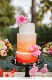 pink orange cake 3