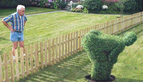 Fences-be a good neighbor-keep the peace-quinju.com