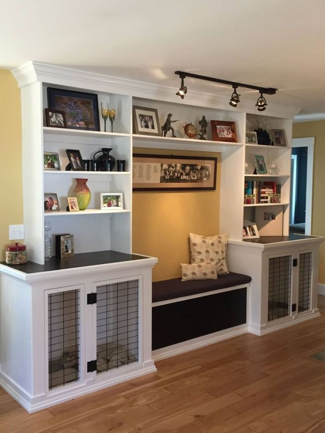 Basement Renovation Ideas with your pet in mind - quinju.com