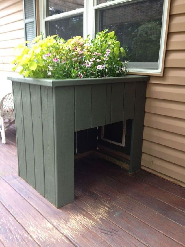 Outdoor Renovation Ideas with your pet in mind - quinju.com