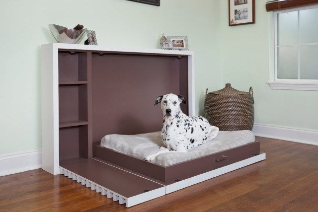 Bedroom Renovation Ideas with your pet in mind - quinju.com