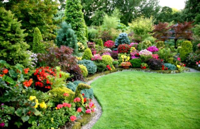 backyard landscaping with colorful plants, backyard design planning, quinju.com