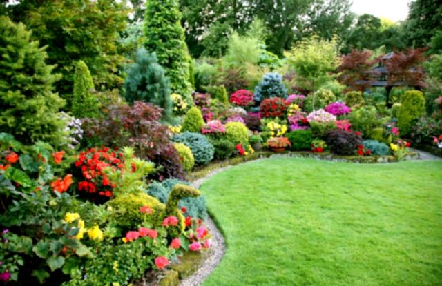 backyard landscaping with colorful plants, backyard design planning, quinju.com