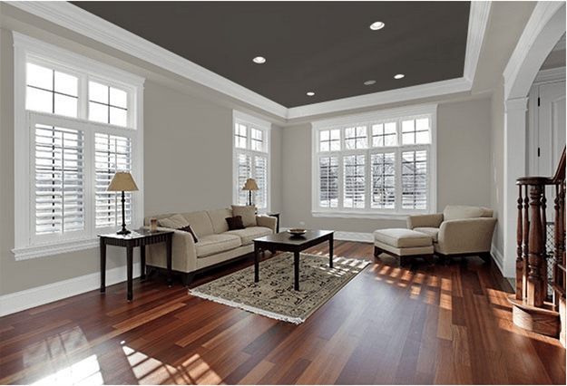 Colored ceiling-living room-dark grey - quinju.com