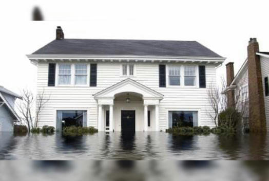 When it comes to cleaning up water damage, especially when dealing with basement flood damage, it is important to get the water cleaned up as fast as you can. Leaving your basement wet is only inviting more problems to occur. For example, a wet wall can lead to damage to the framing and drywall of your home. Also, people sometimes don't realize when water damage effects your subsection. A wet crawlspace can lead to mold damage, and a wet carpet can leave a mildew smell and ruin the floor beneath.