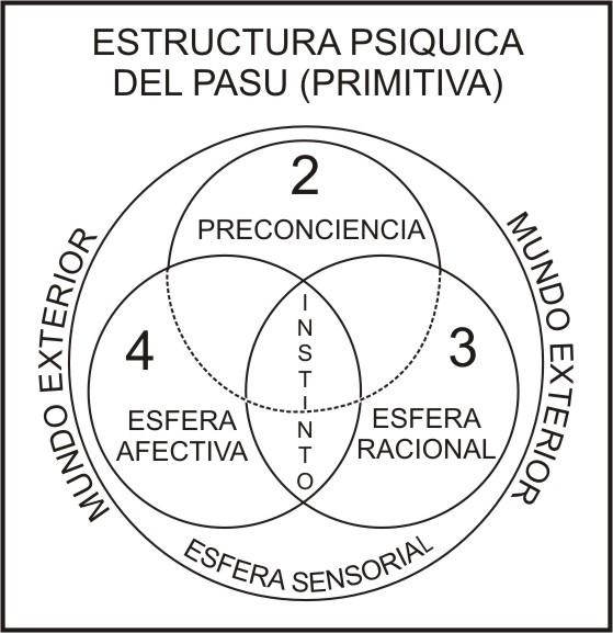 estructura psiquica