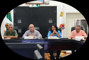 Ingresan iniciativas para garantizar derechos de la niñez y débiles visuales: @CongresoQRoo