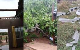Vendaval causó emergencias en Patillal