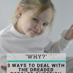 My Toddler Asks Why All the Time! What Do I Do?