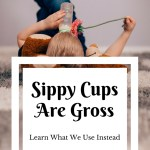 Sippy Cups Are Gross: Using an Open Glass with a Toddler