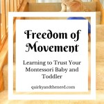 Freedom of Movement: Learning to Trust a Toddler's Abilities