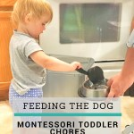 Toddler Chores: Helping Feed the Dog