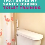 Save Your Sanity During Toilet Training