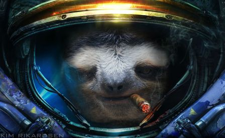 sloth in space suit