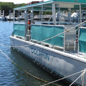 The boat was Dolphin!
