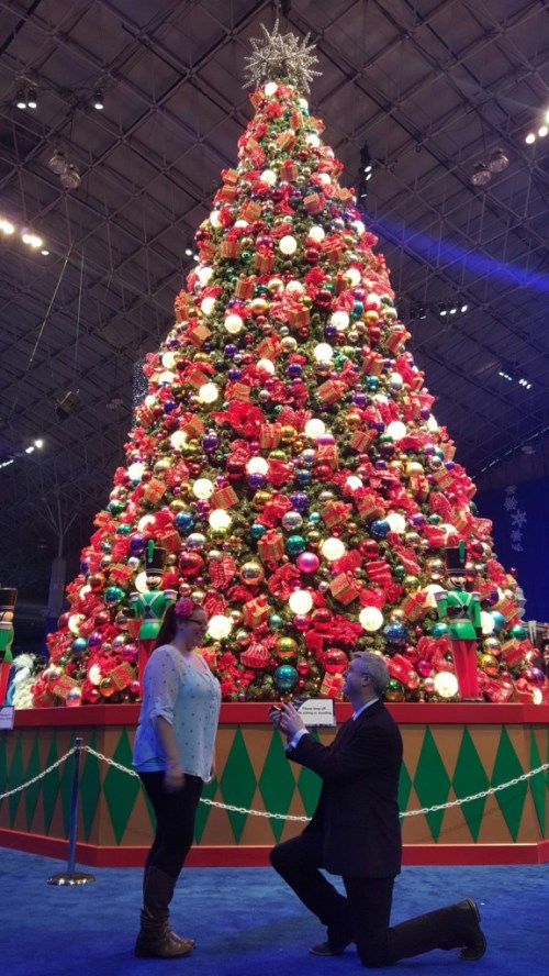 Proposal under the Christmas tree at Winter Wonderfest