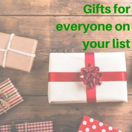 Gifts for everyone on your list a holiday gift guide