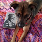 Family book club. Dog reading A Promised Land by Barack Obama