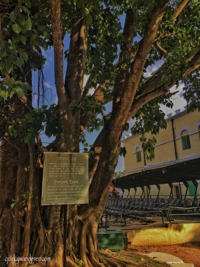 Cellular jail Andamans