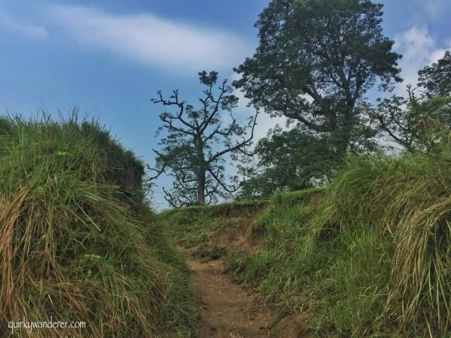 chitwan nature walks
