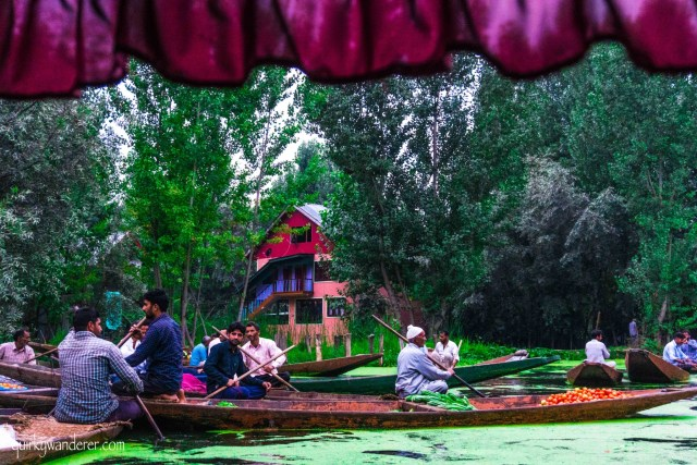 Things to see in srinagar