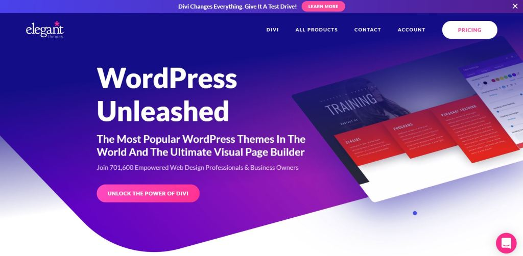 Divi is the easiest theme to use to start your blog.