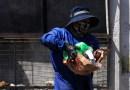 Moradores de Playa Chica se unieron para mantener limpio su sector