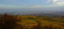 autunno-vienna-austria-colori-stagione-foglie-natura (10)