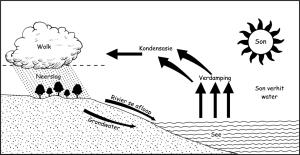 Assessering, Die belangrikheid van water, By OpenStax