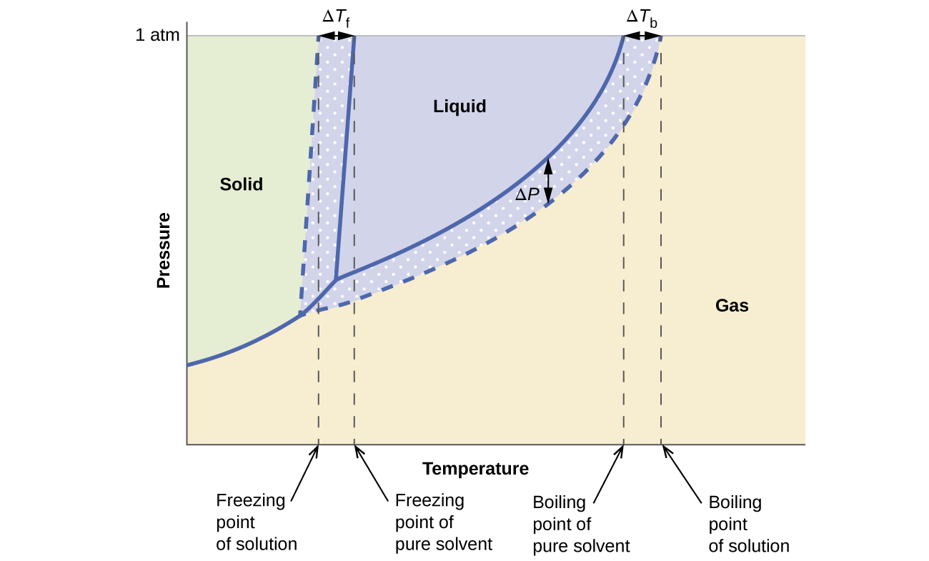 Phase Diagram For An Aqueous Solution Of A Nonelectrolyte