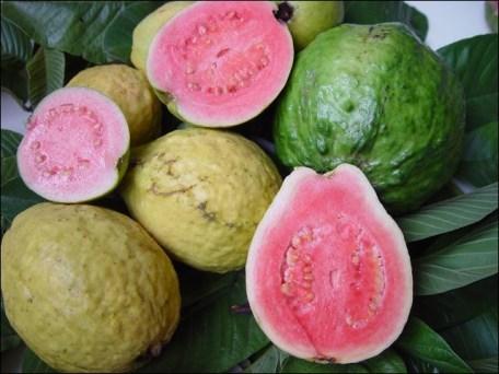 Fruit tropical comestible rond, ovale ou en forme de poire, de 3 à 10 cm de diamètre. Il a une peau fine et fragile.