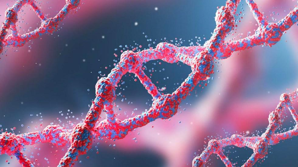 Científicos logran secuencia del genoma humano X ¿Qué significa?