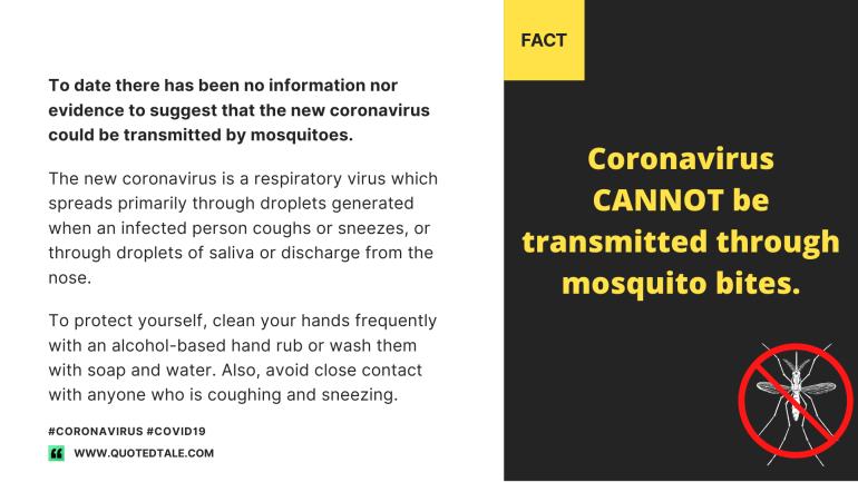 coronavirus-myth-busters